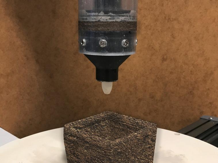 Schallabsorber aus Pilzmyzel