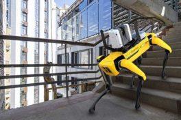 3D-Realitätserfassung mit Laserscanner und mobilem Roboter